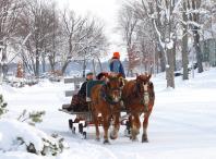 sleigh-ride-lakeside.JPG