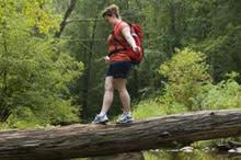 Hiker on a Log