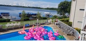 Delavan Lake Resort Pool with Flamingos