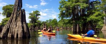 Dead Lakes kayaking