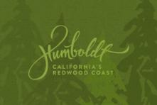 Redwood Art Association - A Focus on Fiber