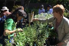 California Native Plant Society Lecture