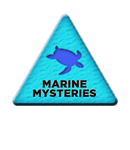 marinemysteries.png