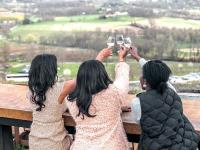 Bluemont Vineyards: Loudoun County, VA