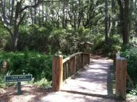 One of the Golden Isles' many nature walk and hiking trail heads in coastal georgia