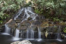 Ormond Memorial Art Museum & Gardens Water Fountain