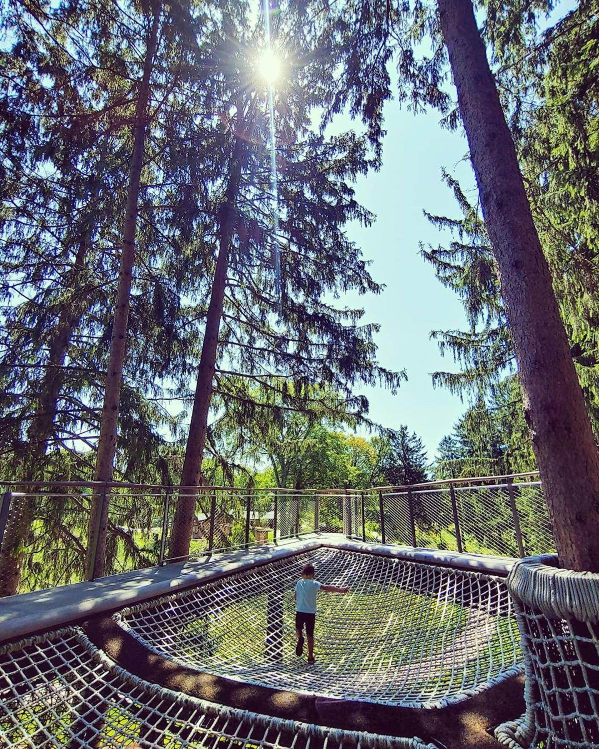 Boy playing in the cargo net hammocks in a grove of spruce trees on the Whiting Forest of Dow Gardens Canopy Walk