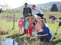 Discover animal habitats and the importance of wetlands at Wonders of the Wetlands offered at the Hudson Highlands Nature Museum in Cornwall on Saturday, May 22 at 10 a.m. Photo by George Potanovic Jr.