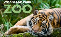 Woodland Park Zoo in Seattle photo of tiger