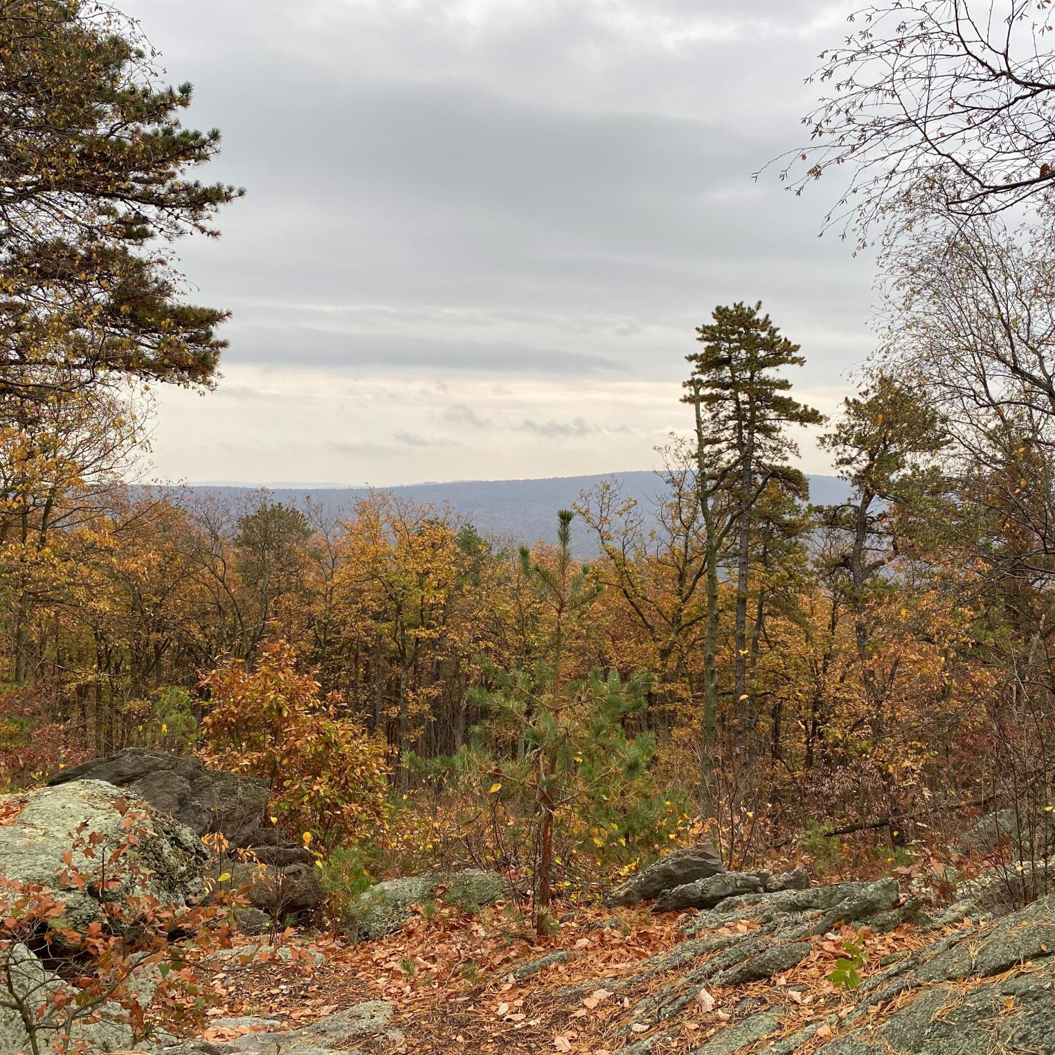 Hamonds Rocks Overview