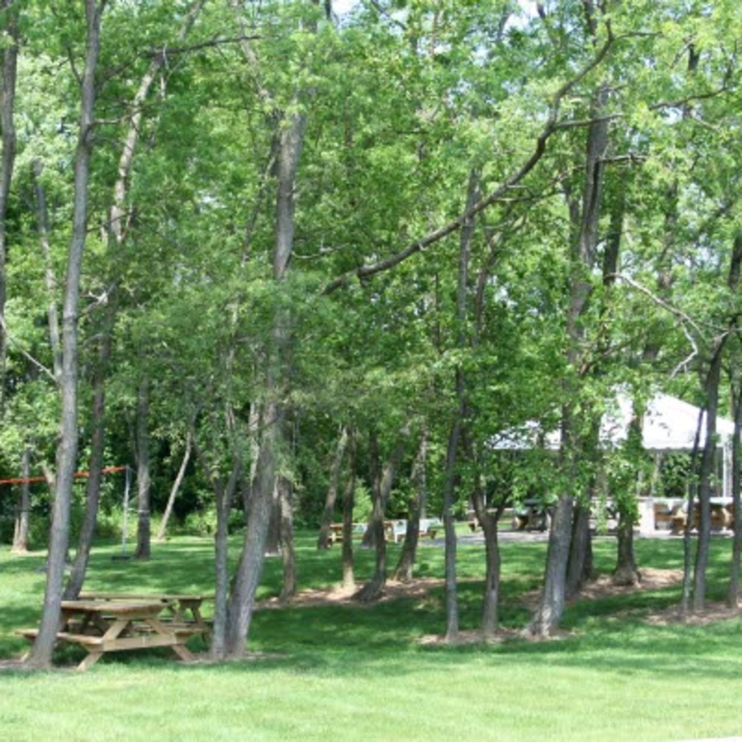 Outdoor and picnic area