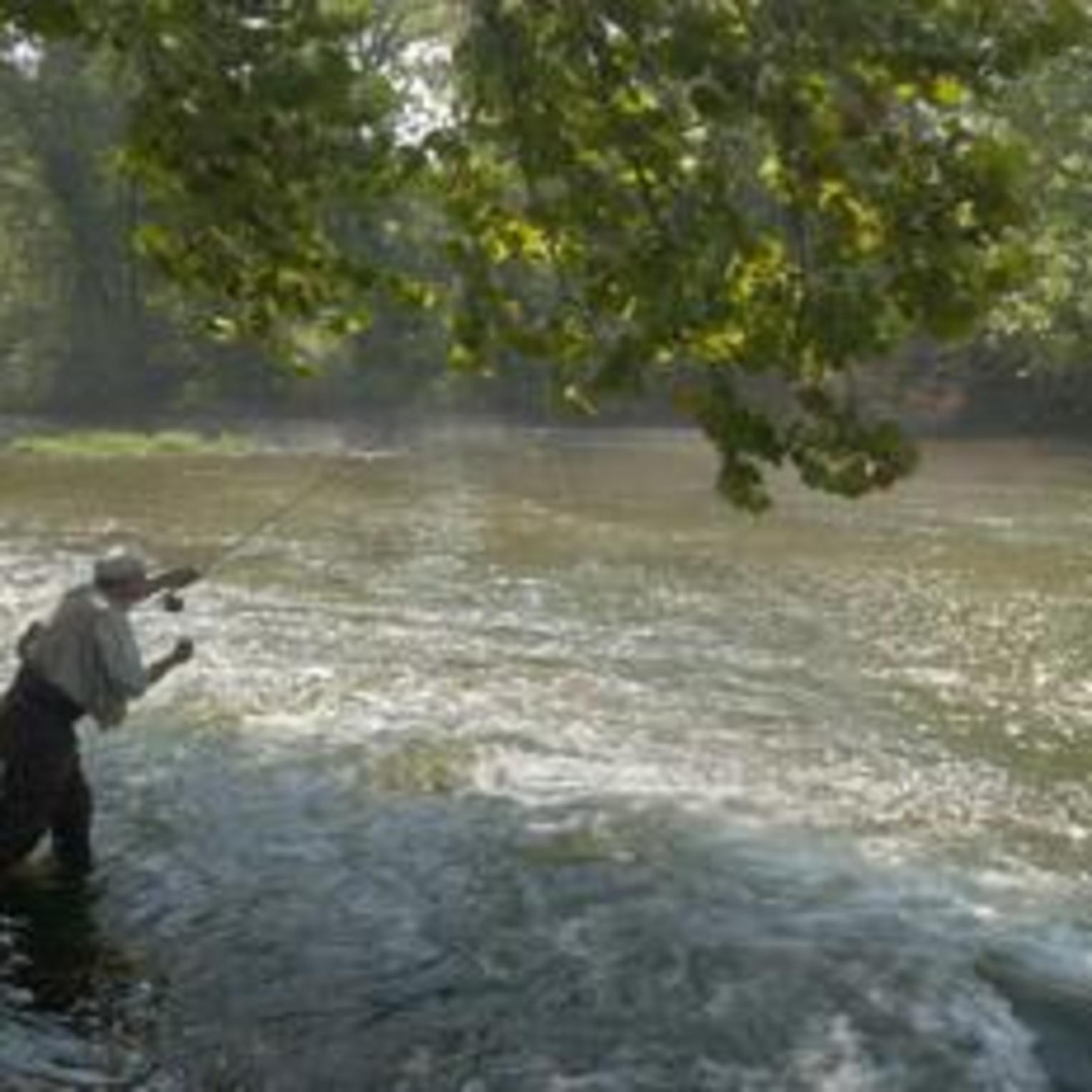 Fly-Fishing on the Yellow Breeches Creek at Allenberry