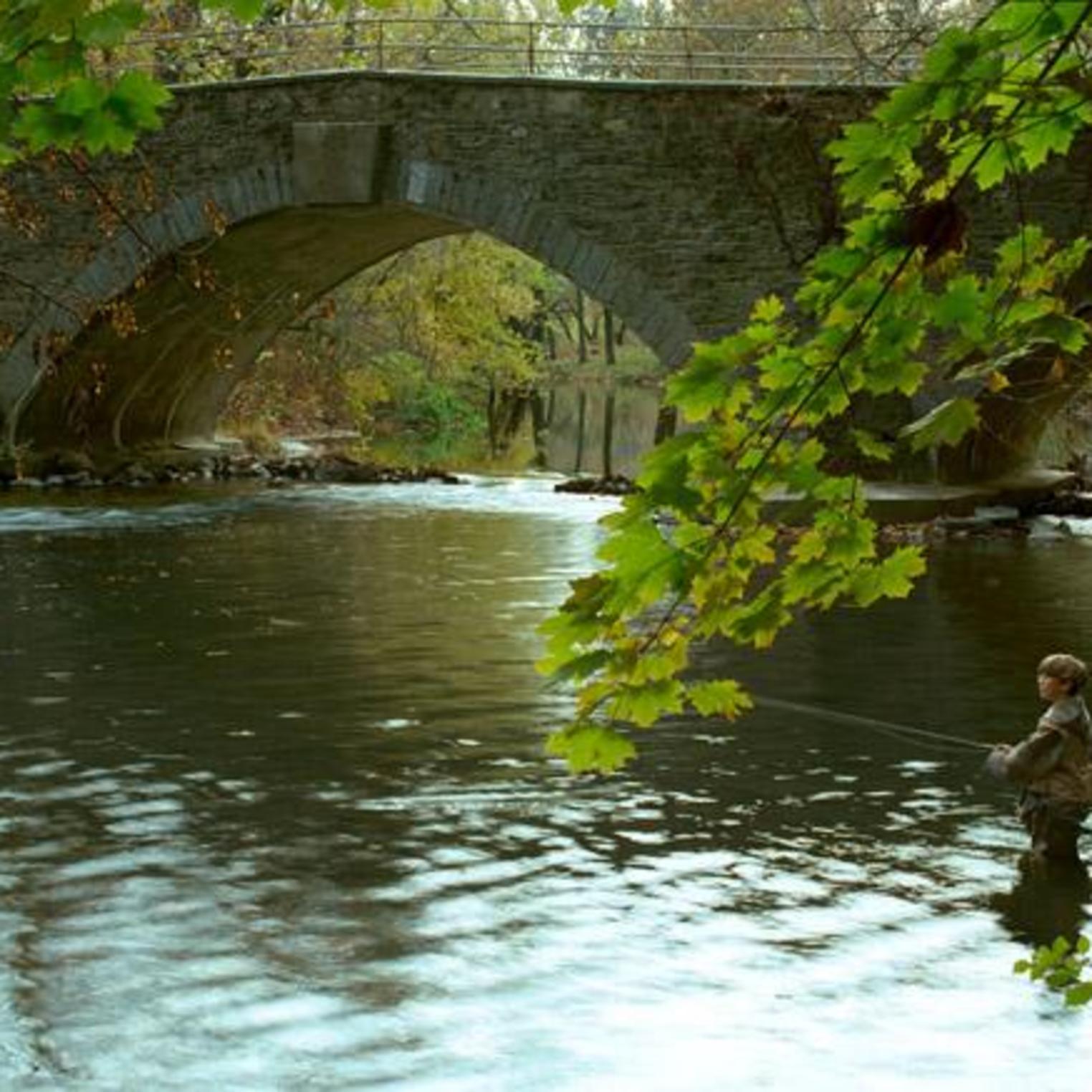 Fishing in Yellow Breeches