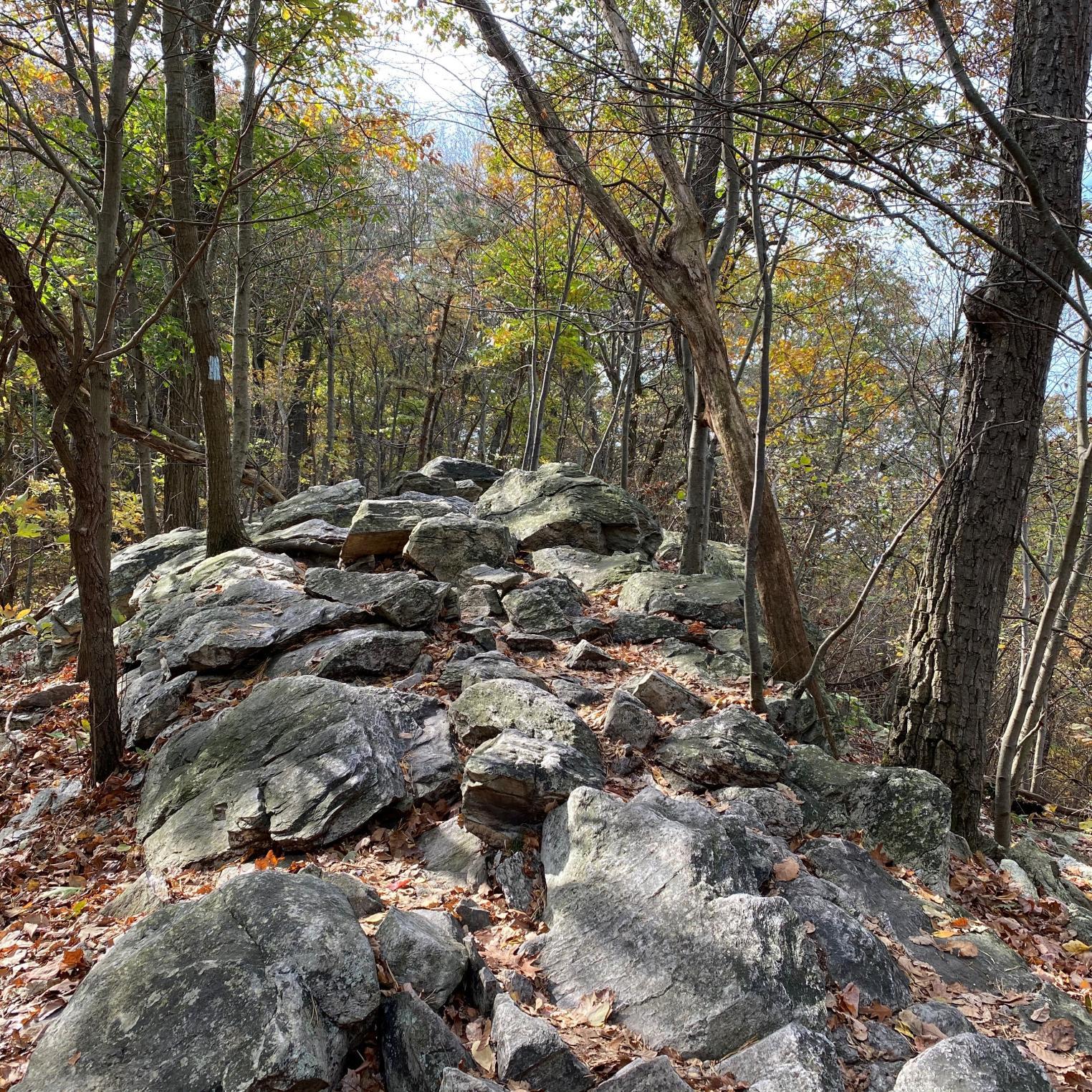 White Rocks Trail