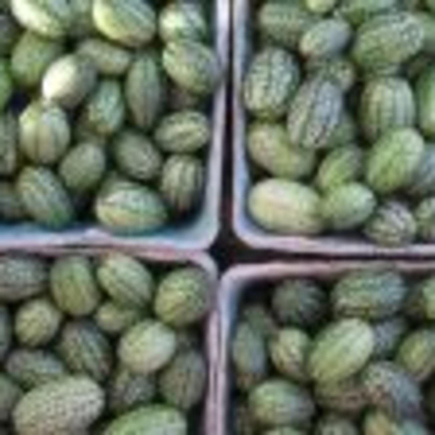 Adams-Ricci Farmers Market