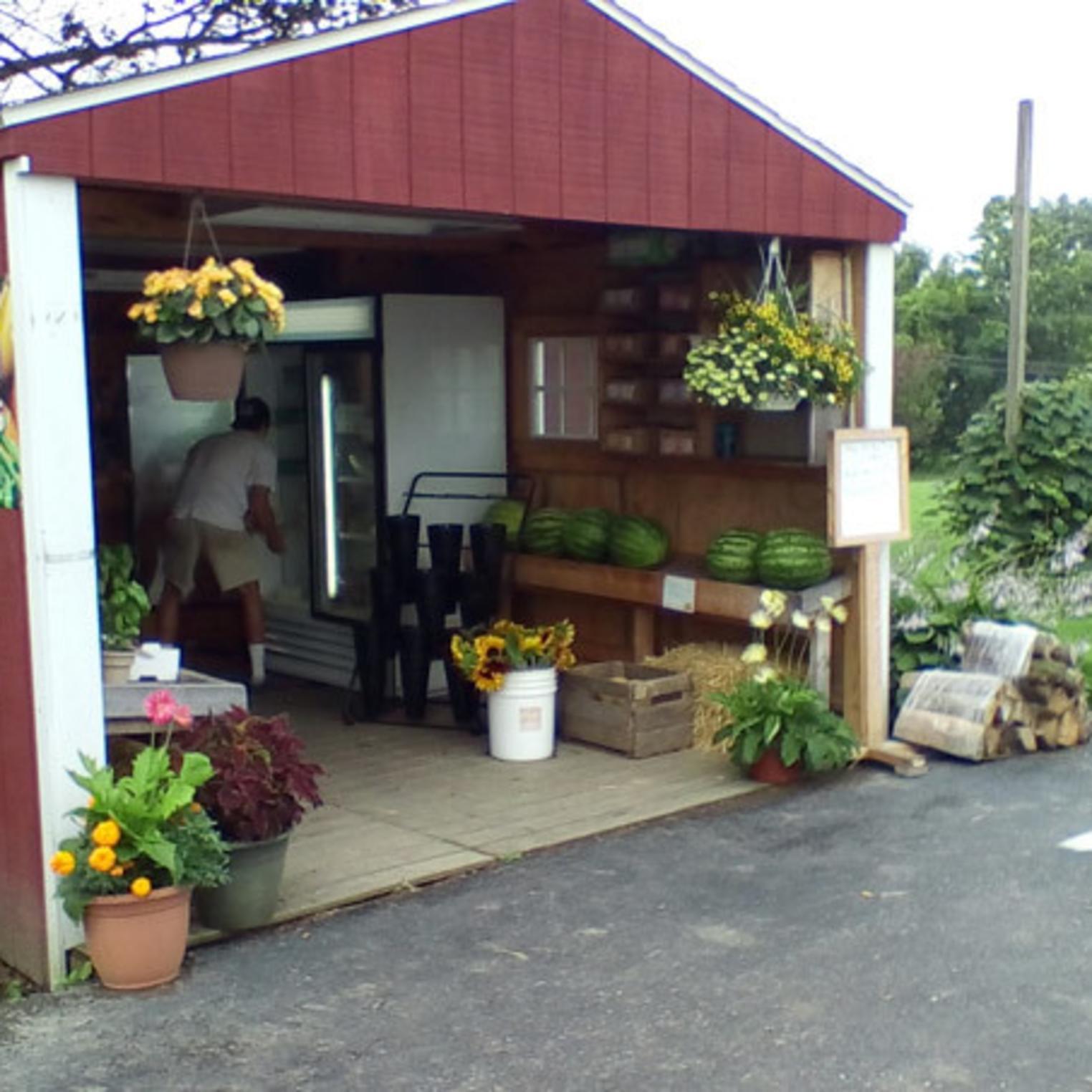 Basehore Farm