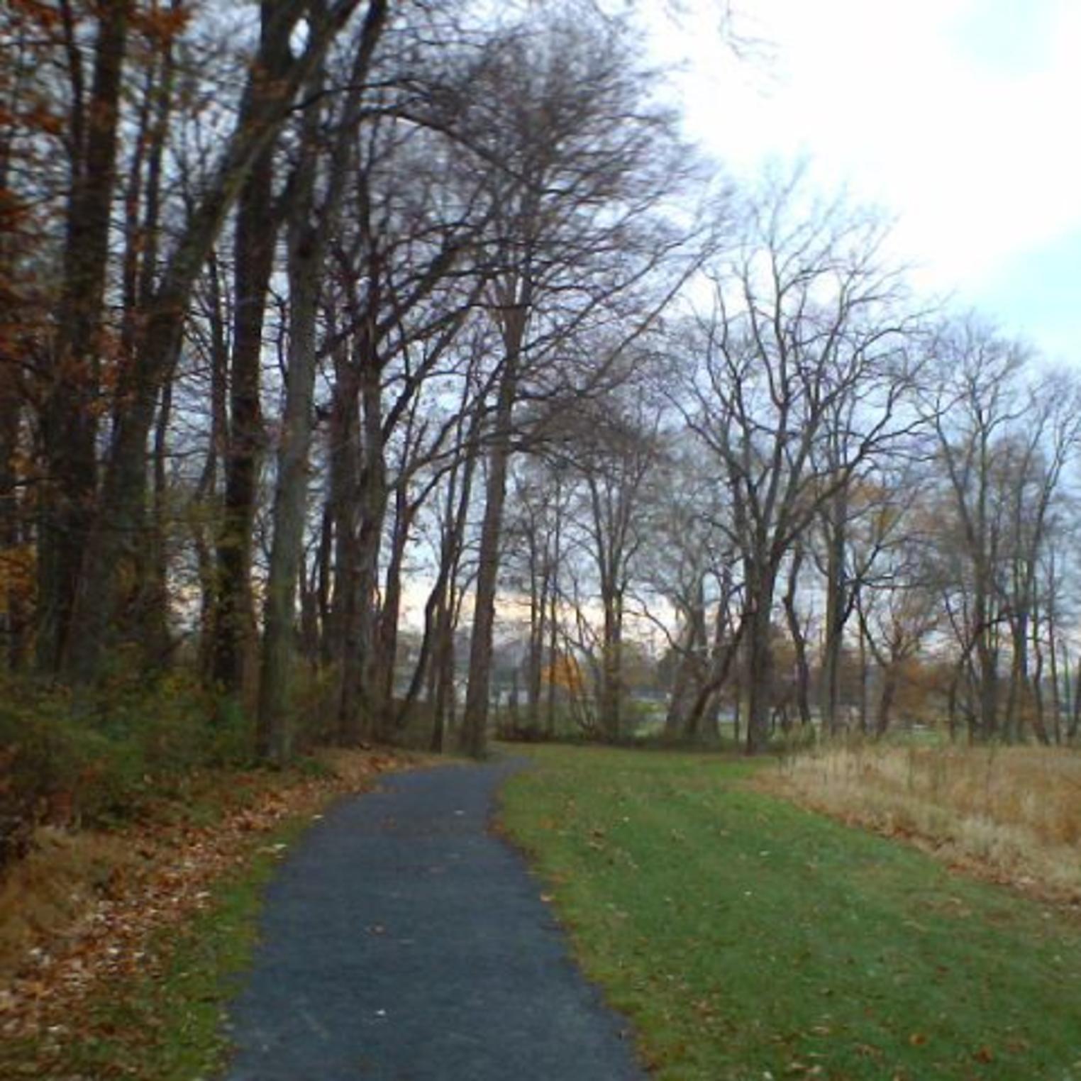 Fielding Belt Trail