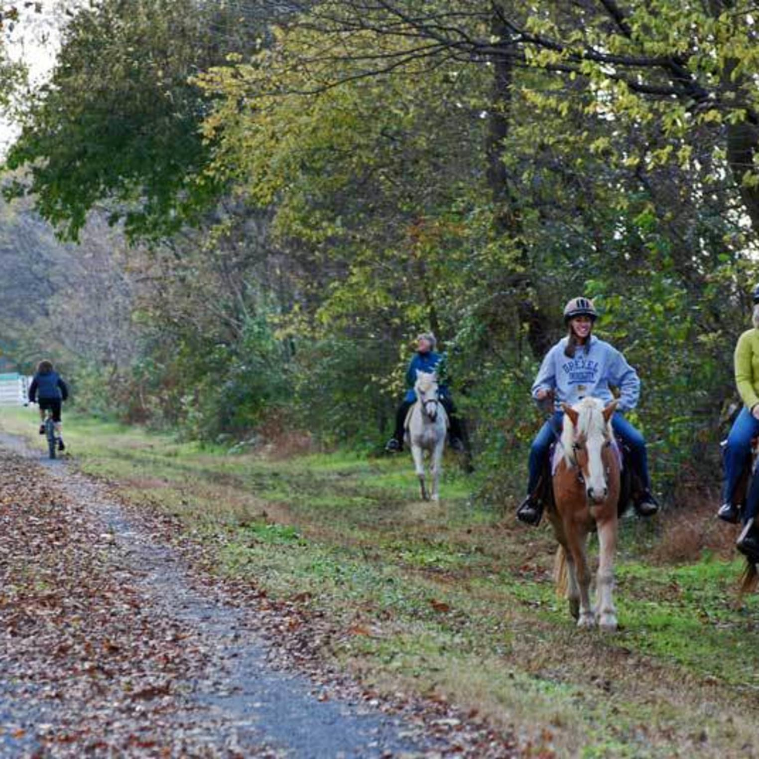 Biking, Walking and Horseback Riding on the Cumberland Valley Rail Trail