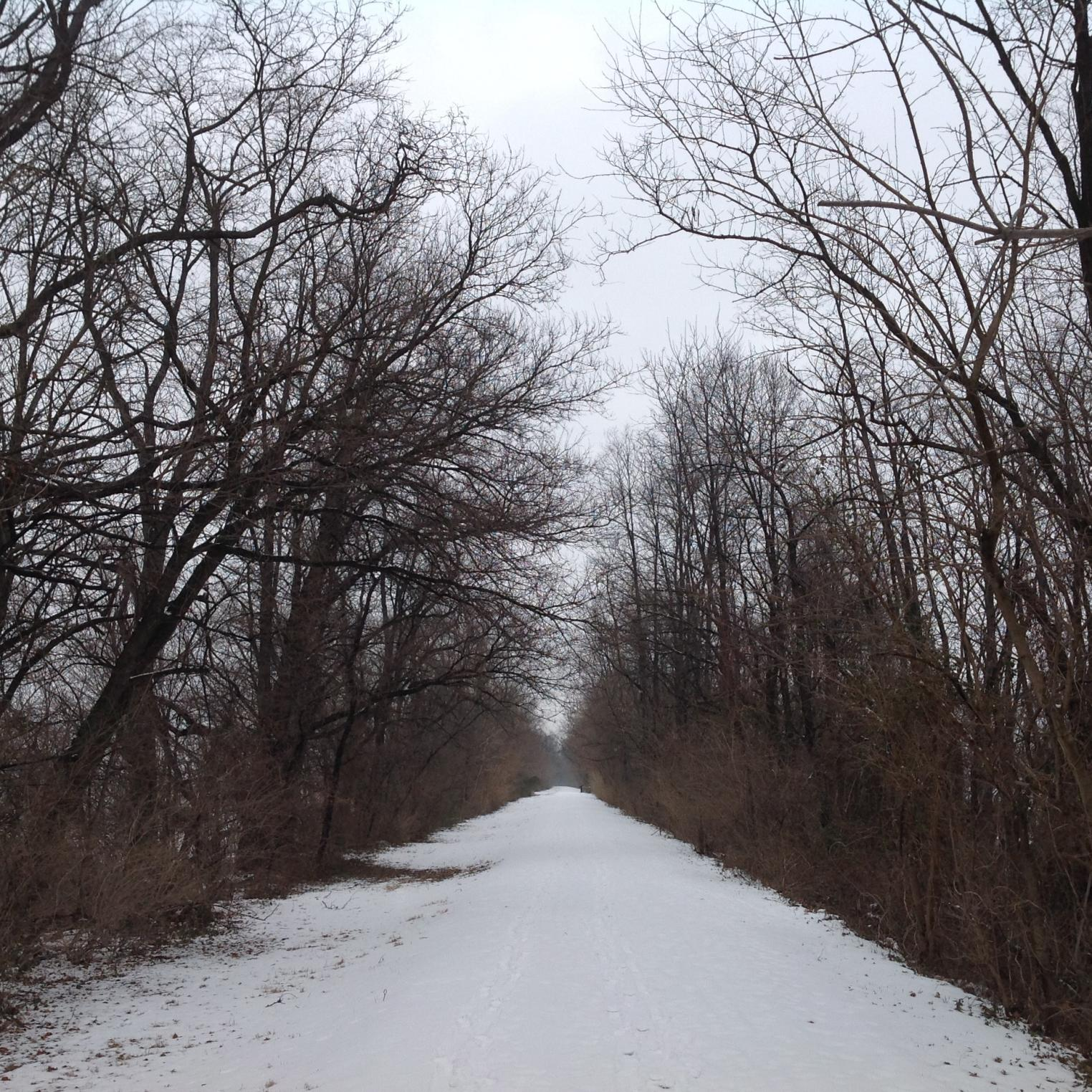 The Cumberland Valley Rail Trail in Winter