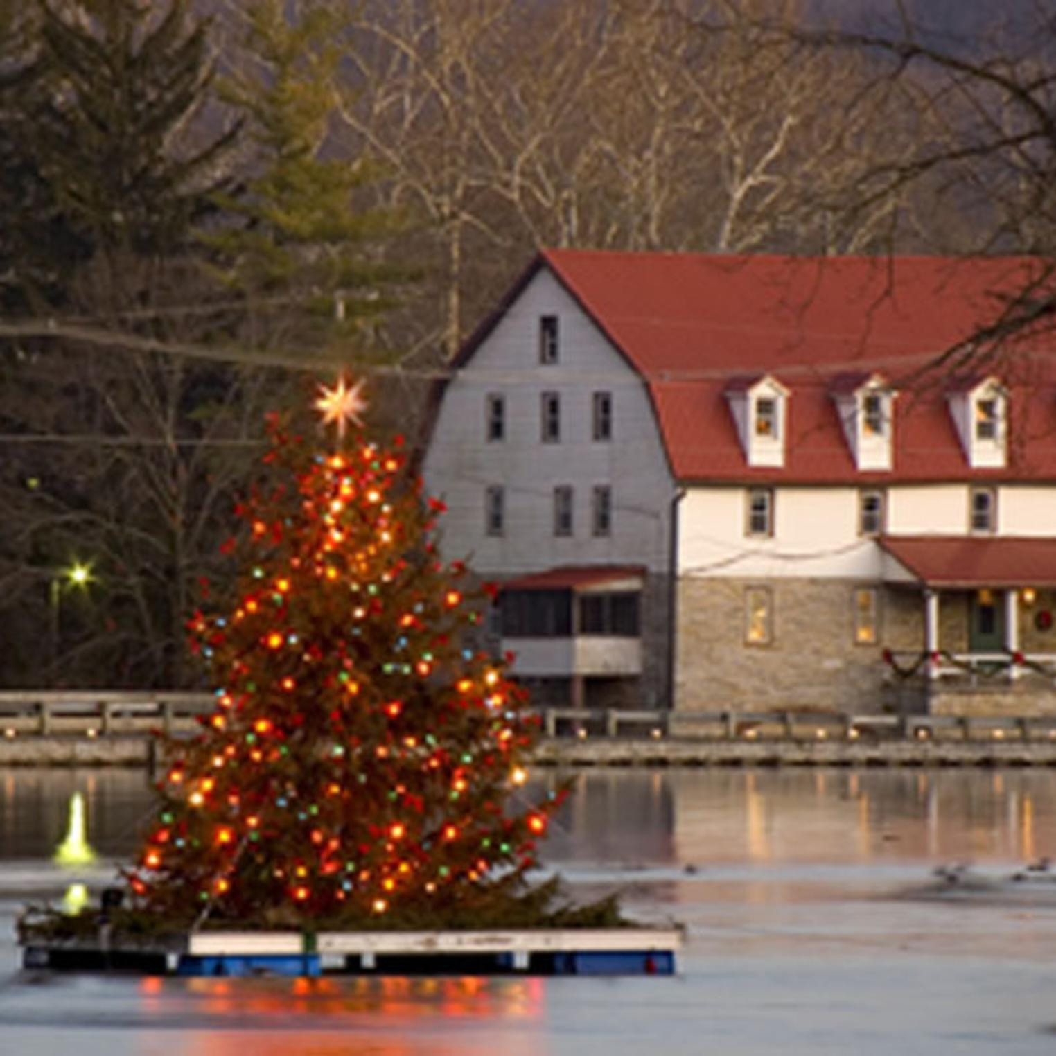 Floating Christmas Tree on Children's Lake