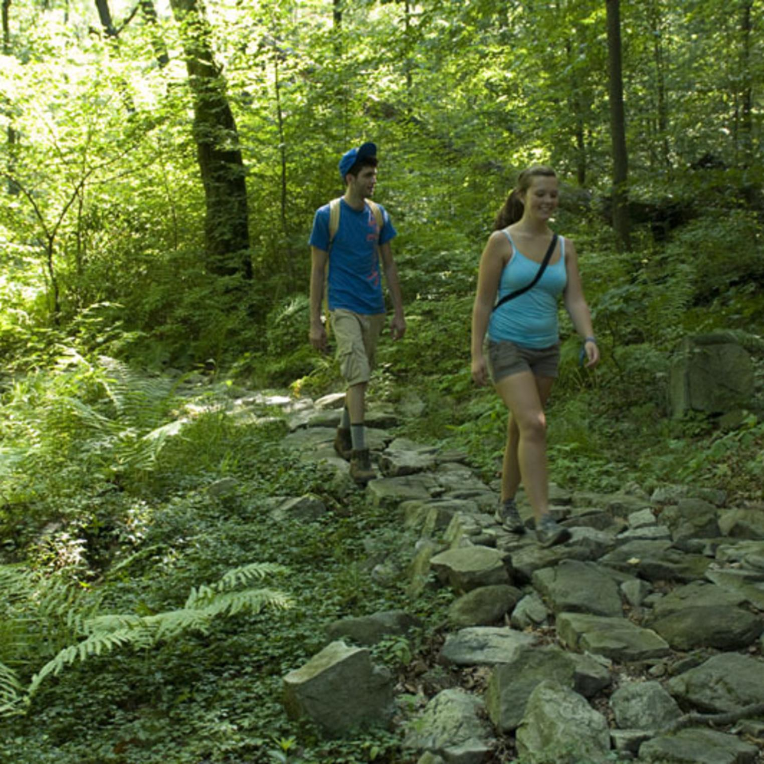 Hiking Trail in Colonel Denning State Park
