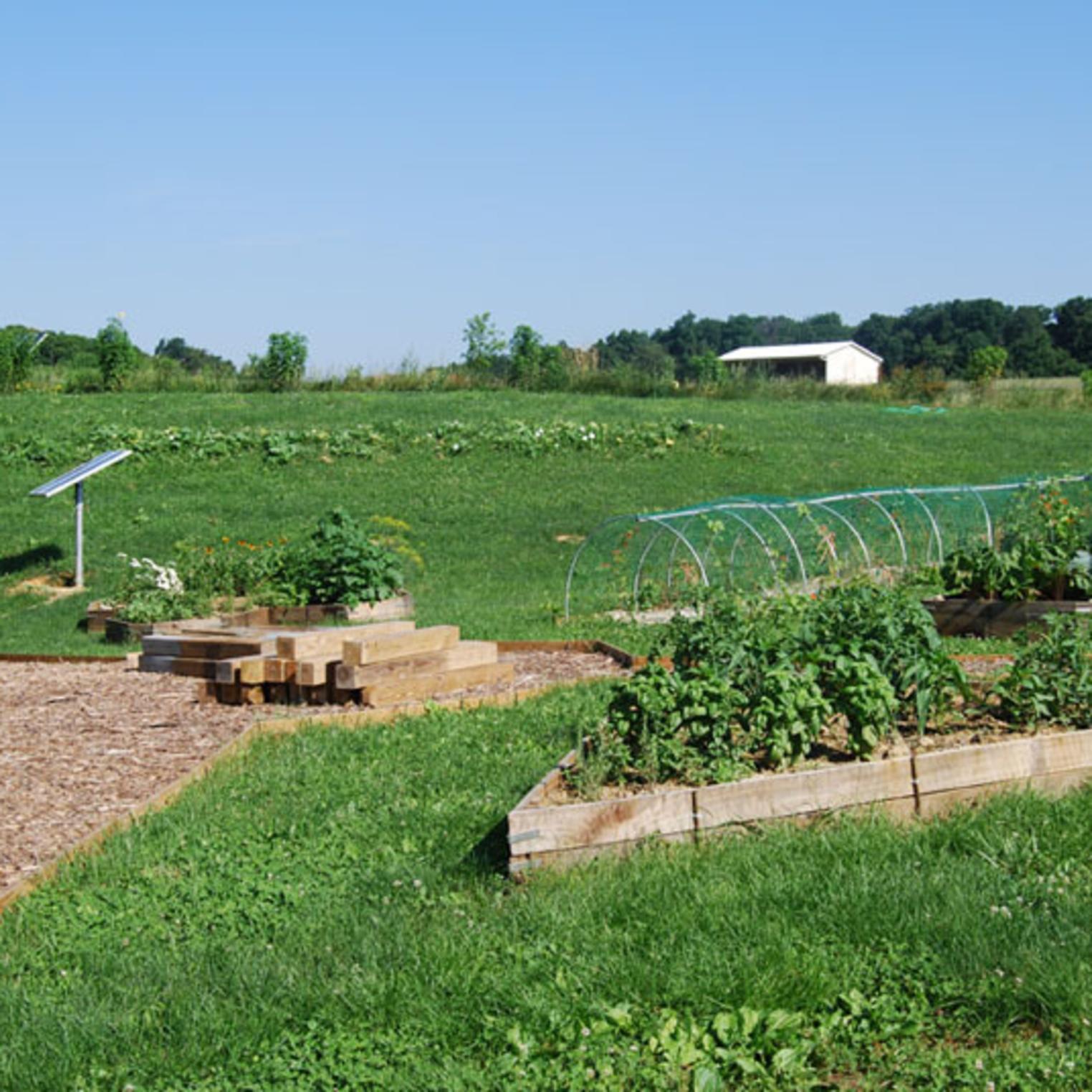 Dickinson College Farm Garden