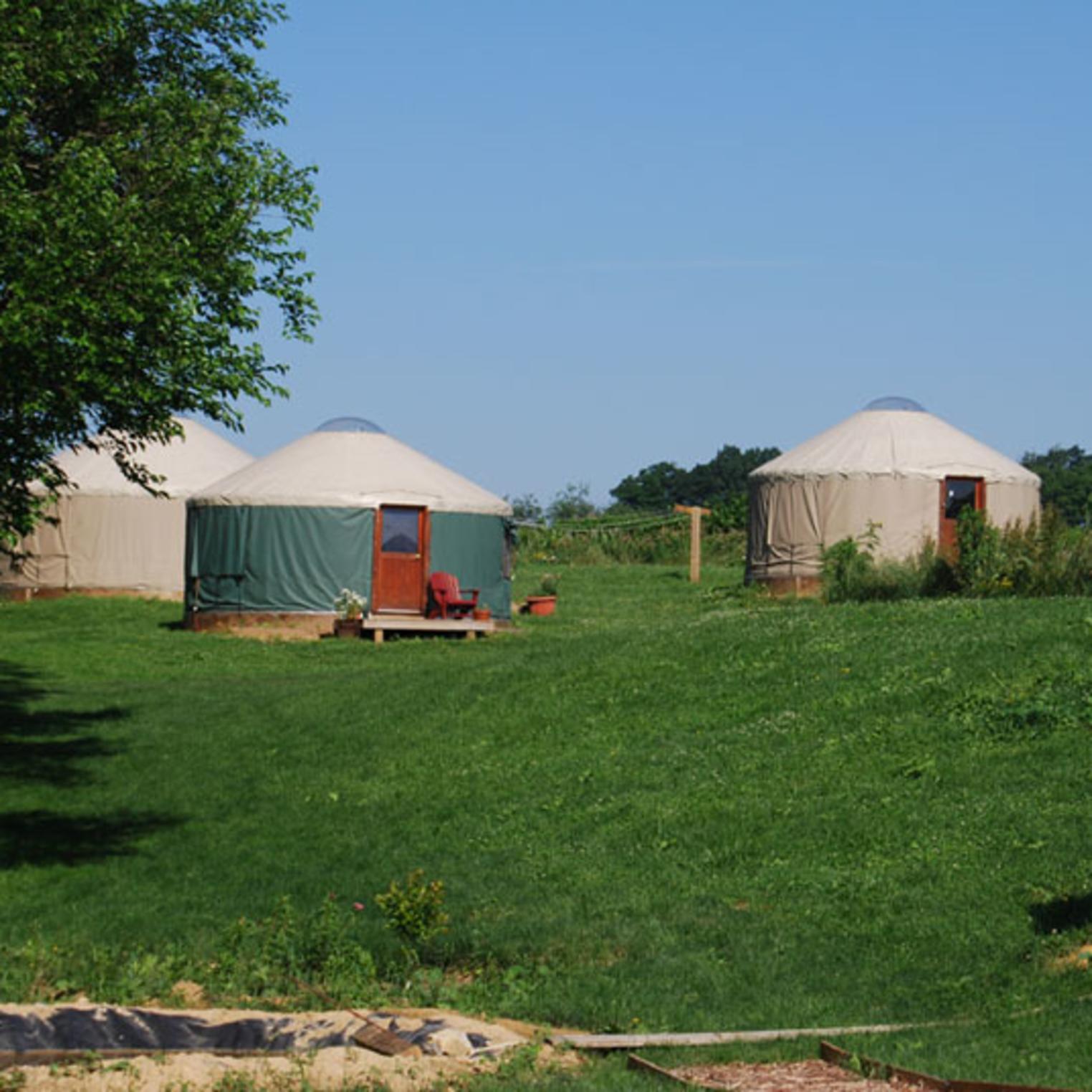 Dickinson College Farm