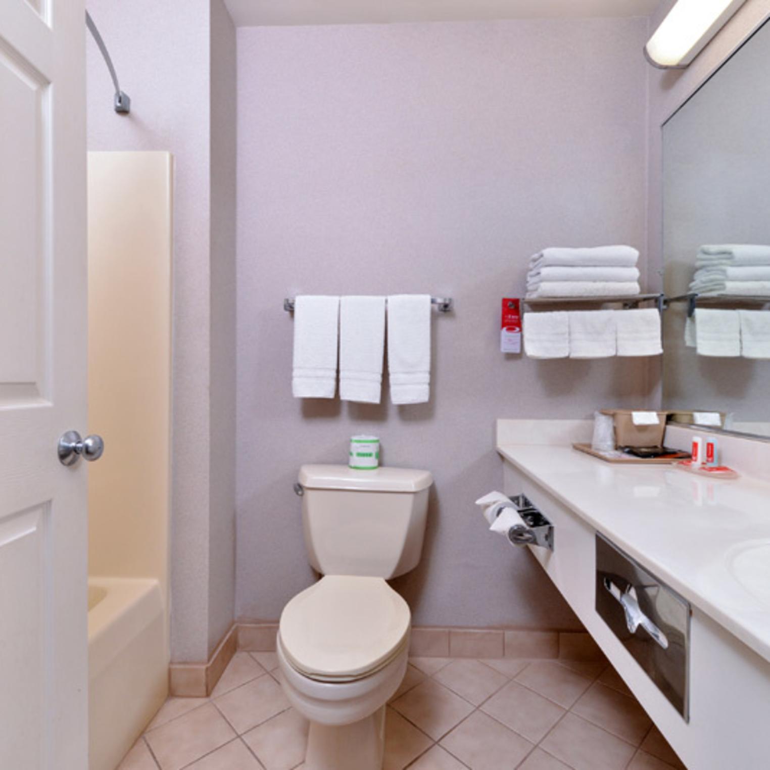 Econo Lodge Carlisle Guest Bathroom
