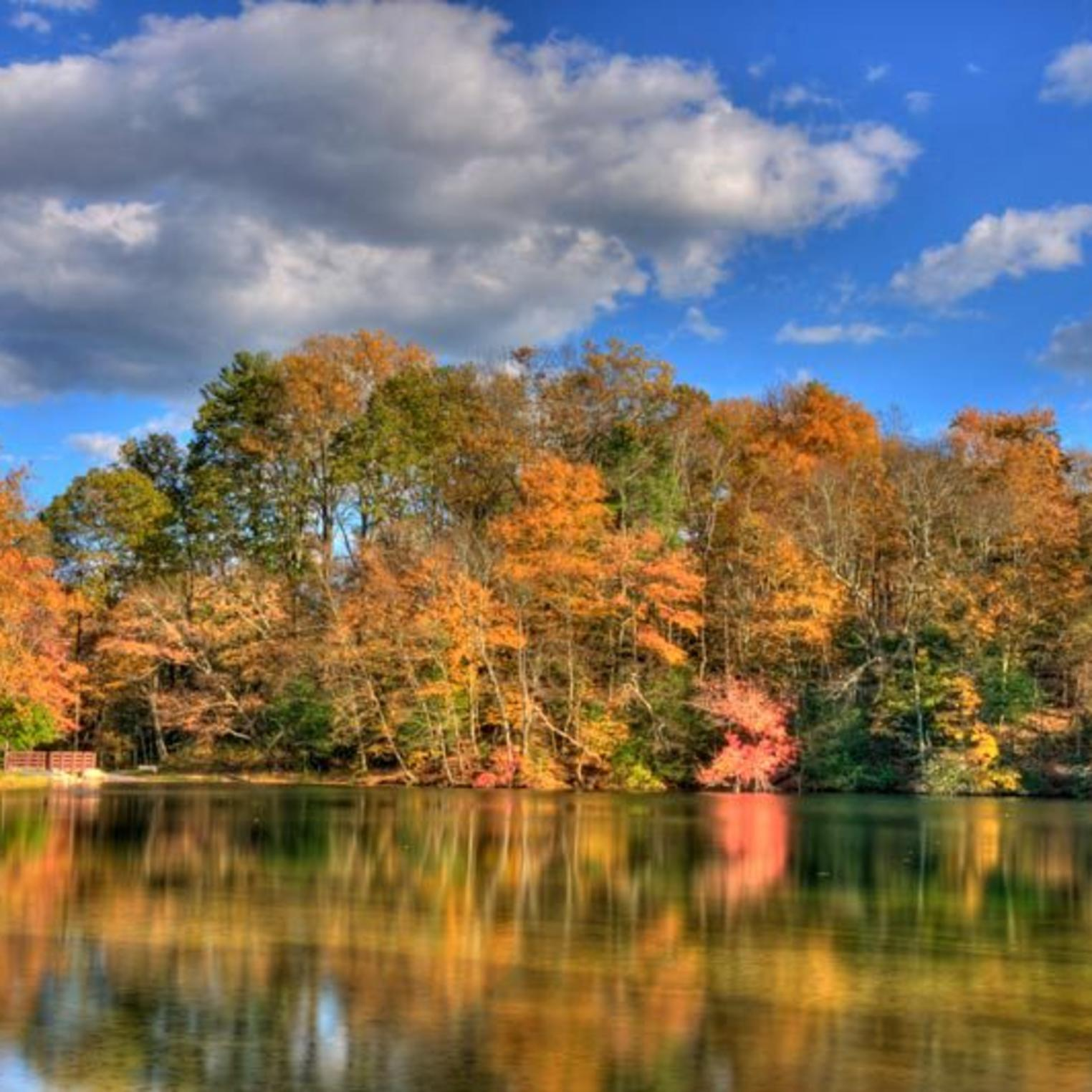 Autumn at Fuller Lake