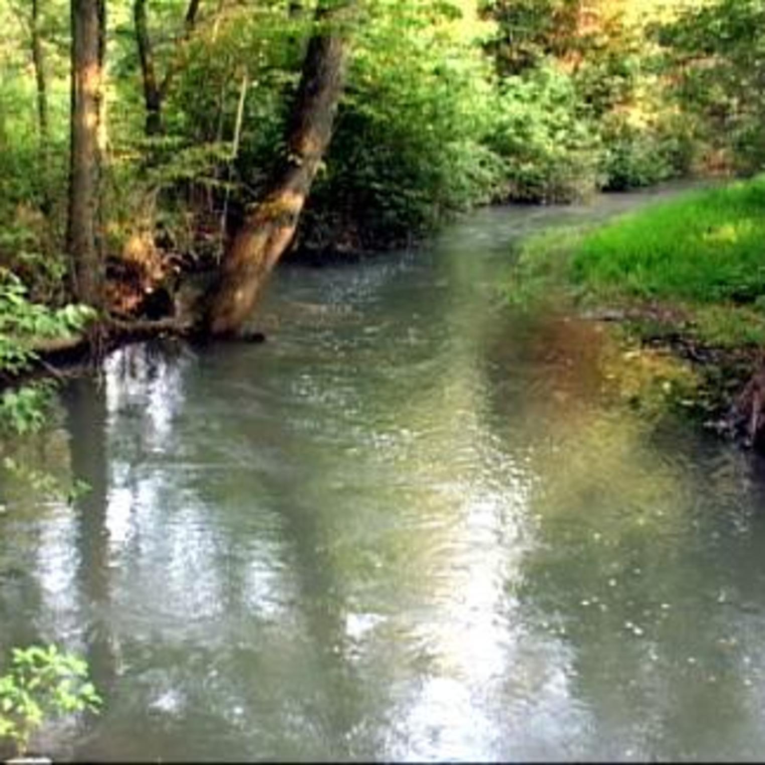 Green Springs Creek
