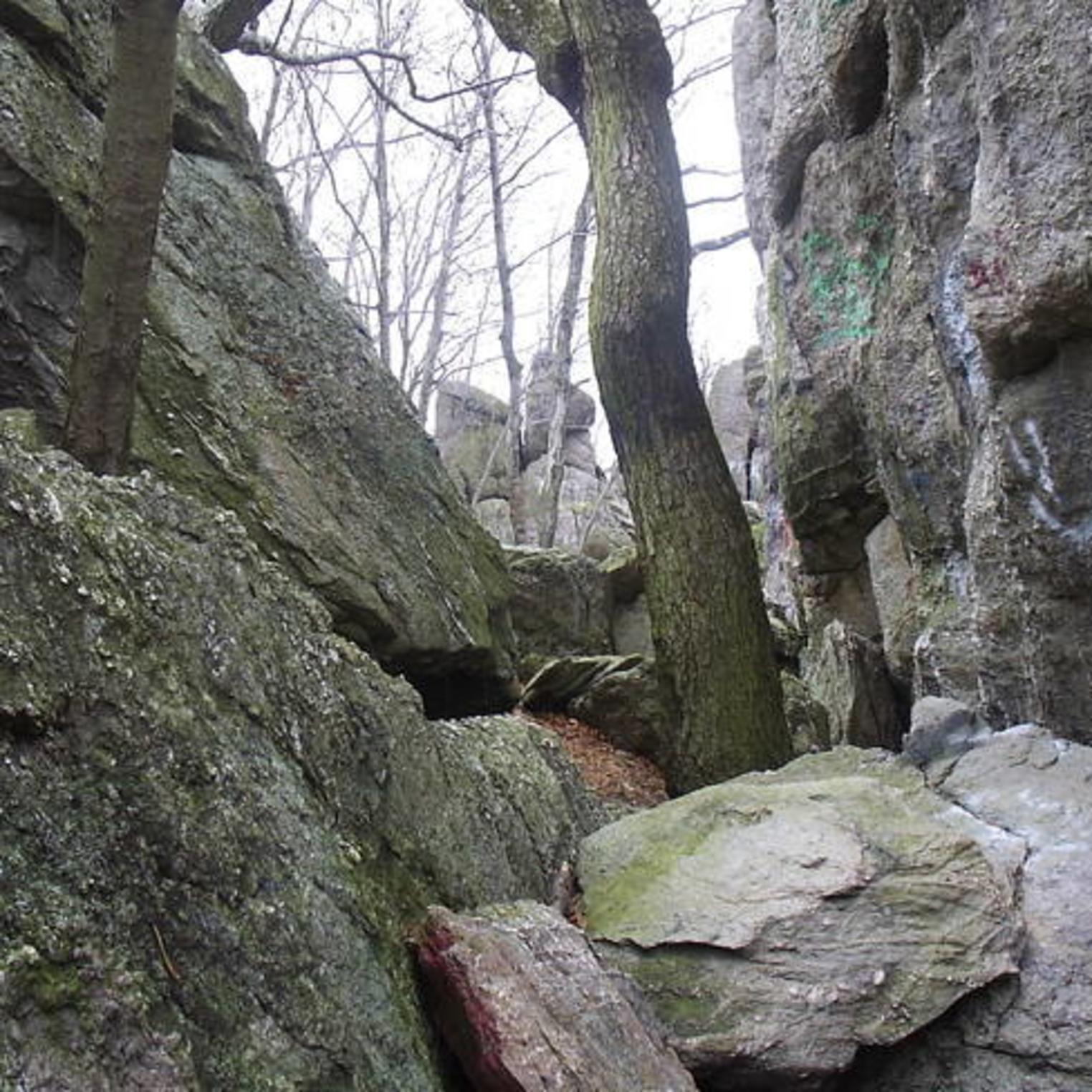 Hammonds Rocks in Michaux State Forest courtesy of summitpost.org