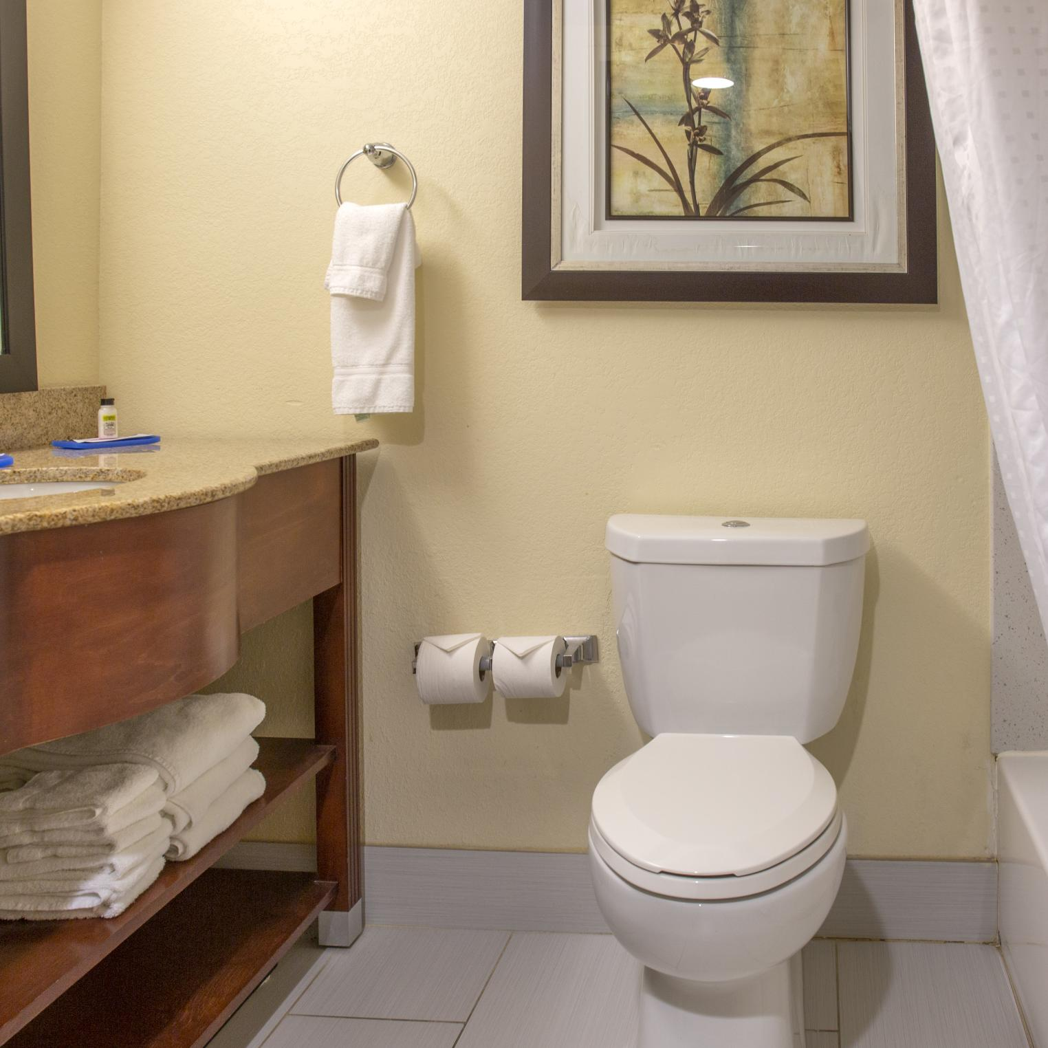 Holiday Inn Express Harrisburg SW Mechanicsburg Bathroom
