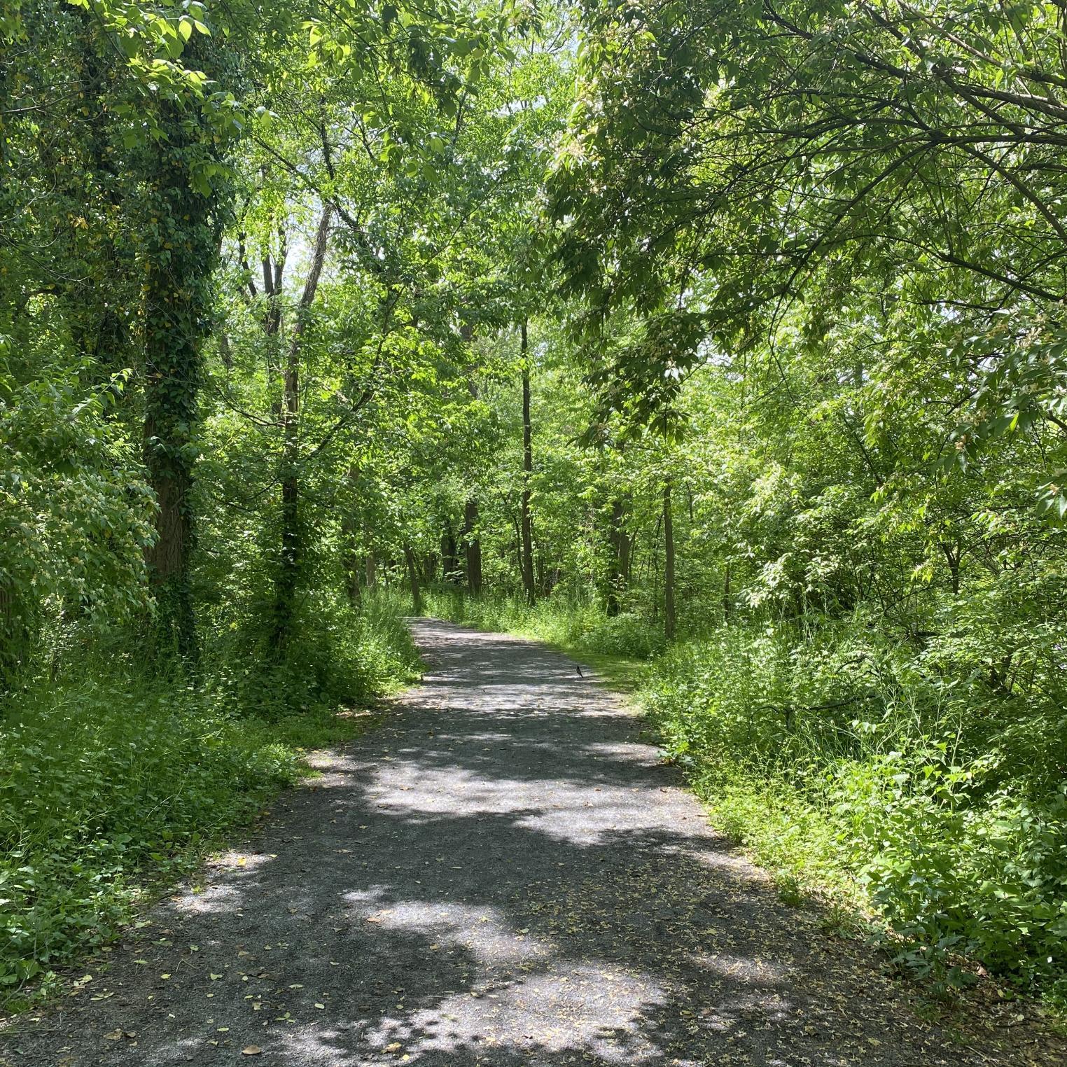 LeTort Spring Run & Nature Trail