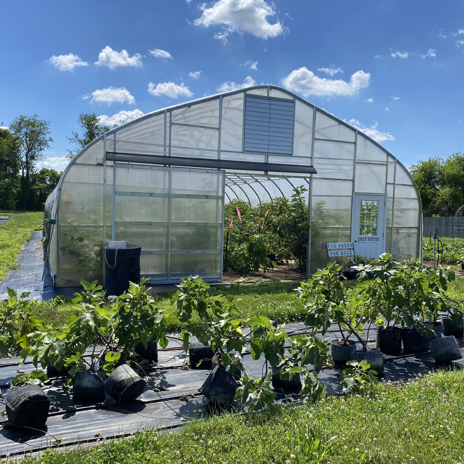 Threefold Farm