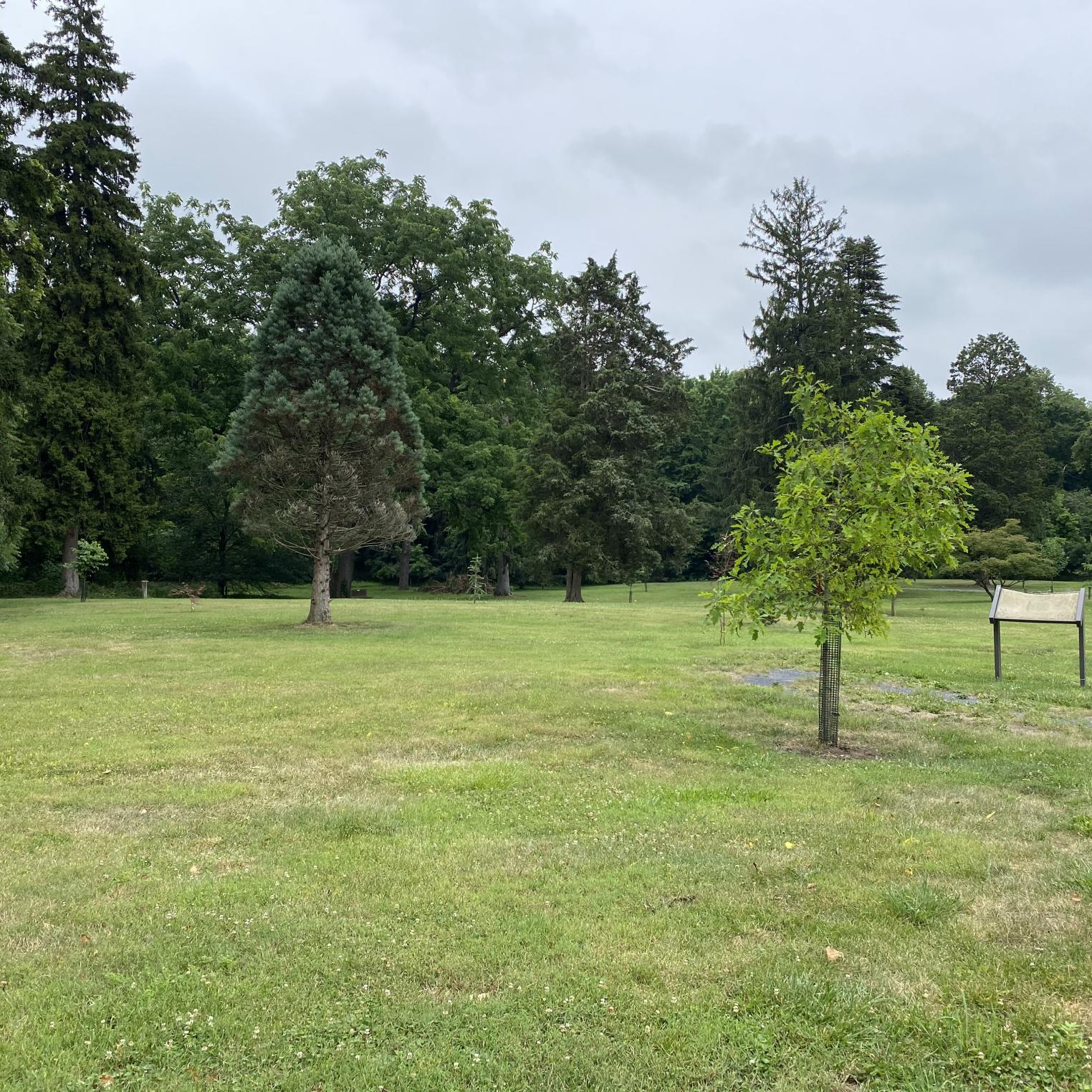 Seven Gables Park