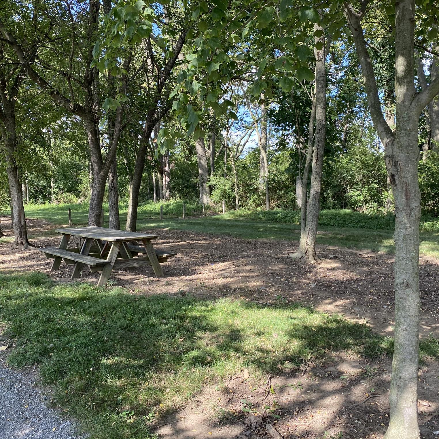 Leidigh Park