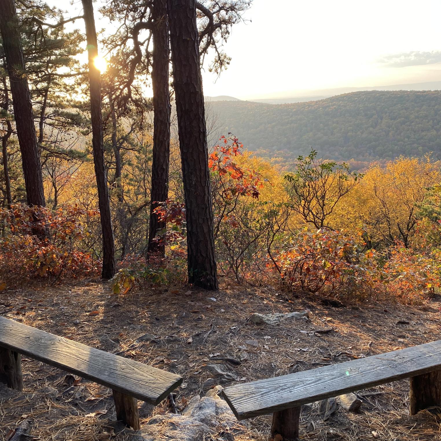 Scenic Vista Trail