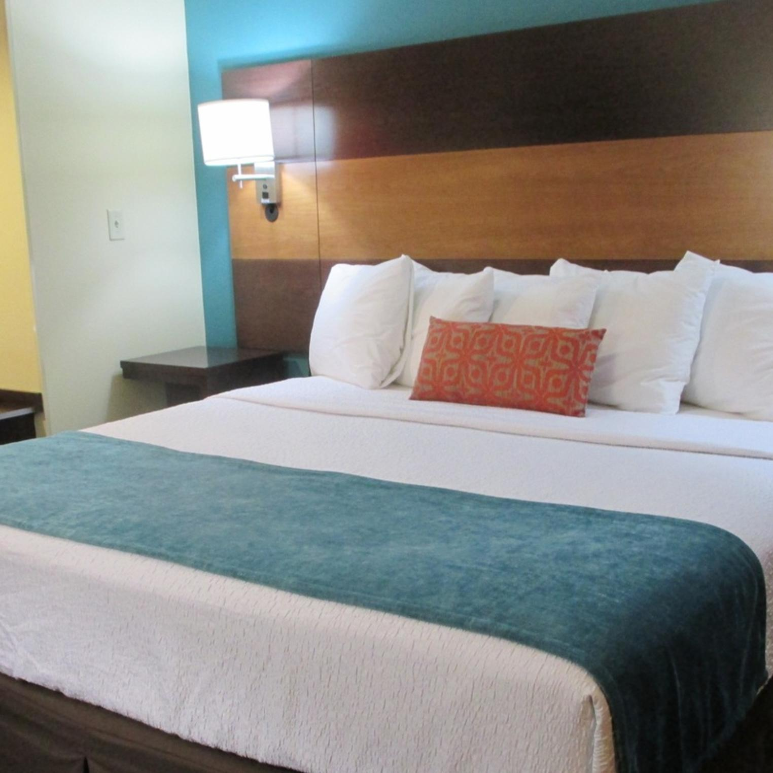 Best Western Plus Harrisburg/Mechanicsburg King Guest Room