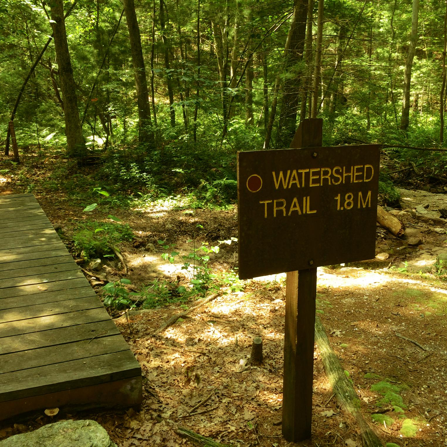 Watershed Trail at Kings Gap