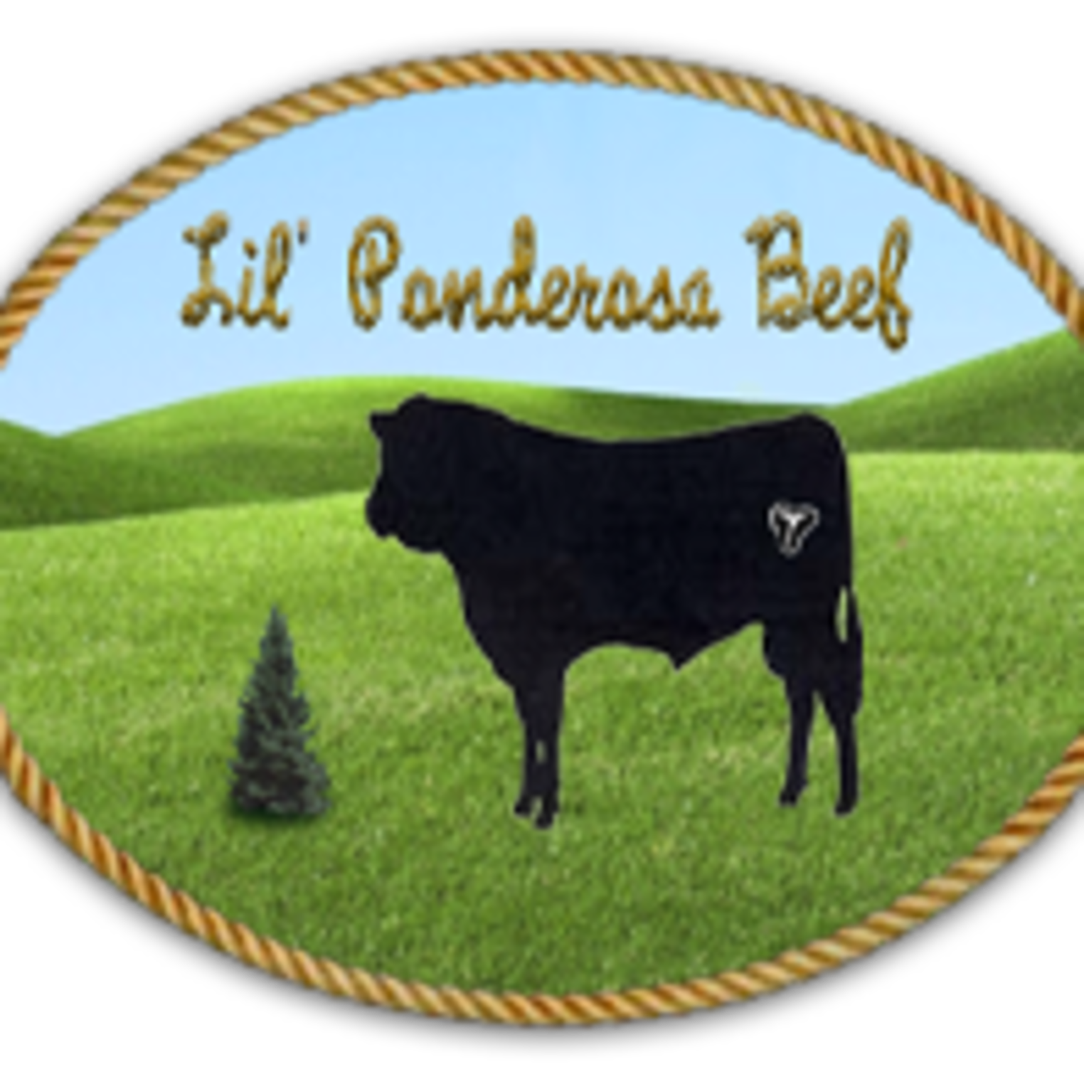 Lil' Ponderosa Enterprises