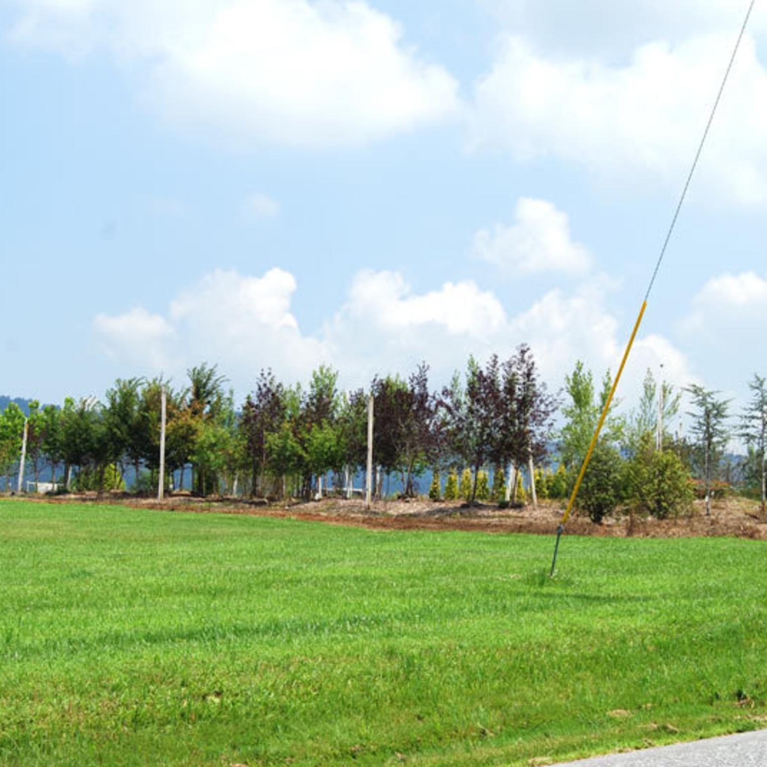 MacNamara Tree Farm