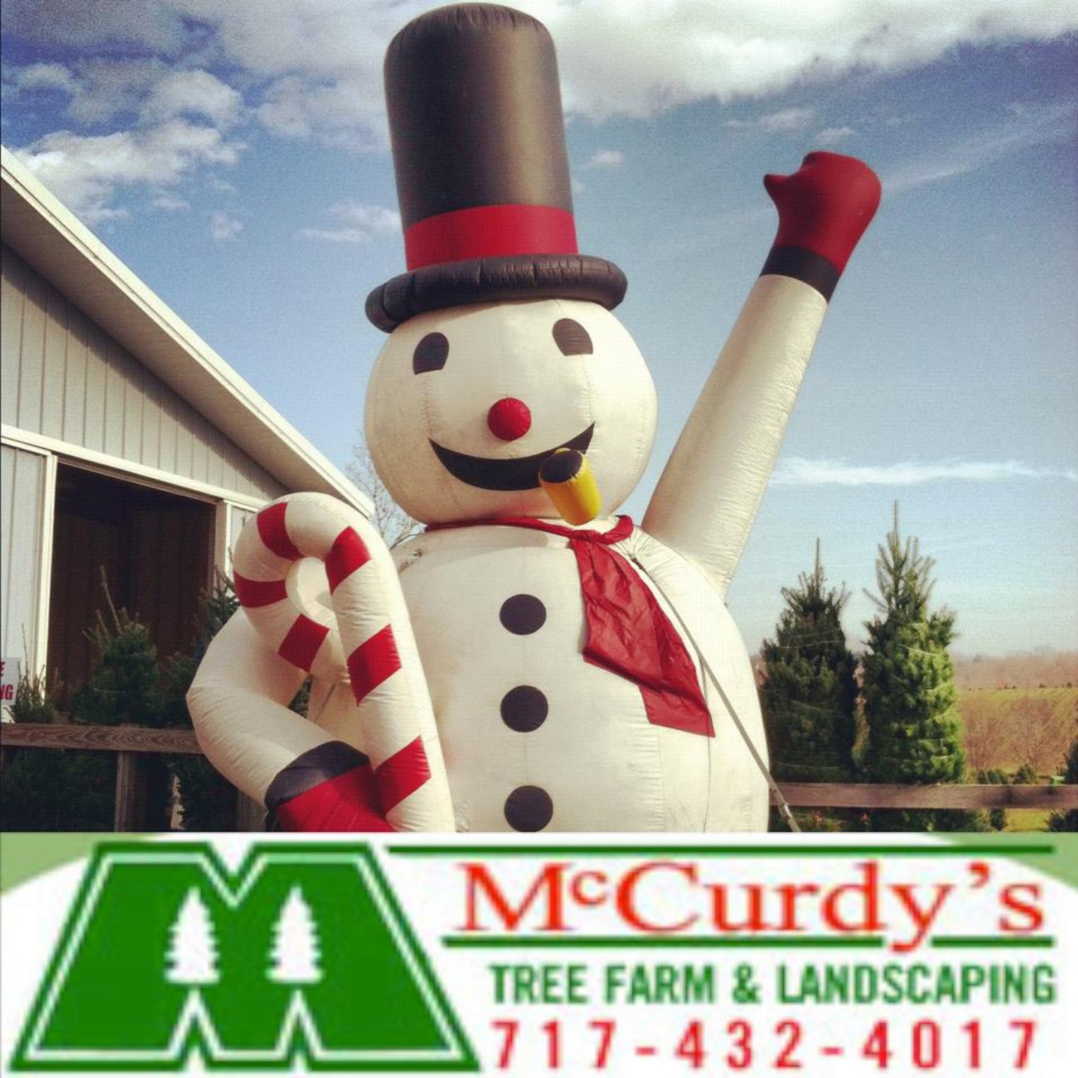 McCurdy's Tree Farm & Landscaping