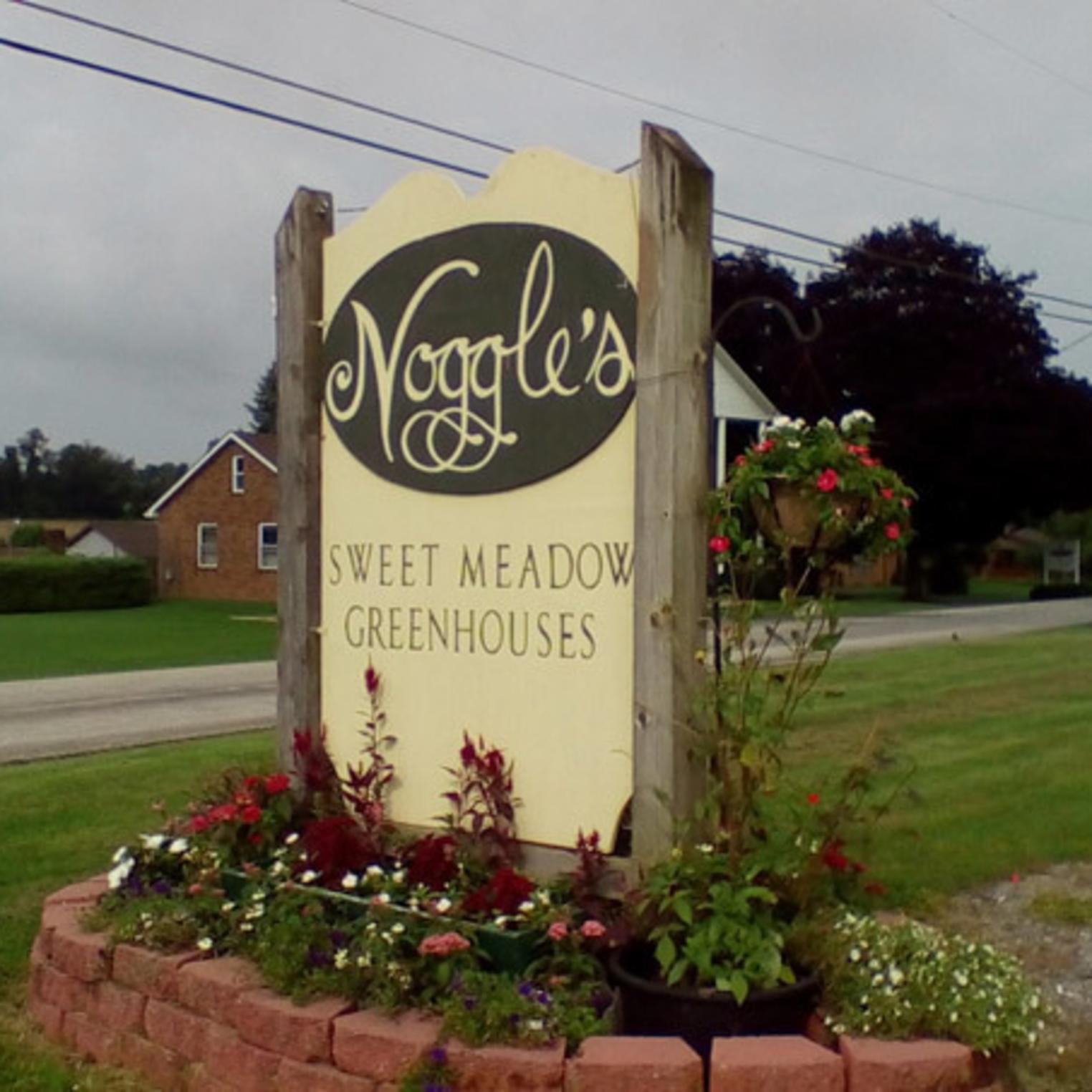Noggles Sweet Meadow