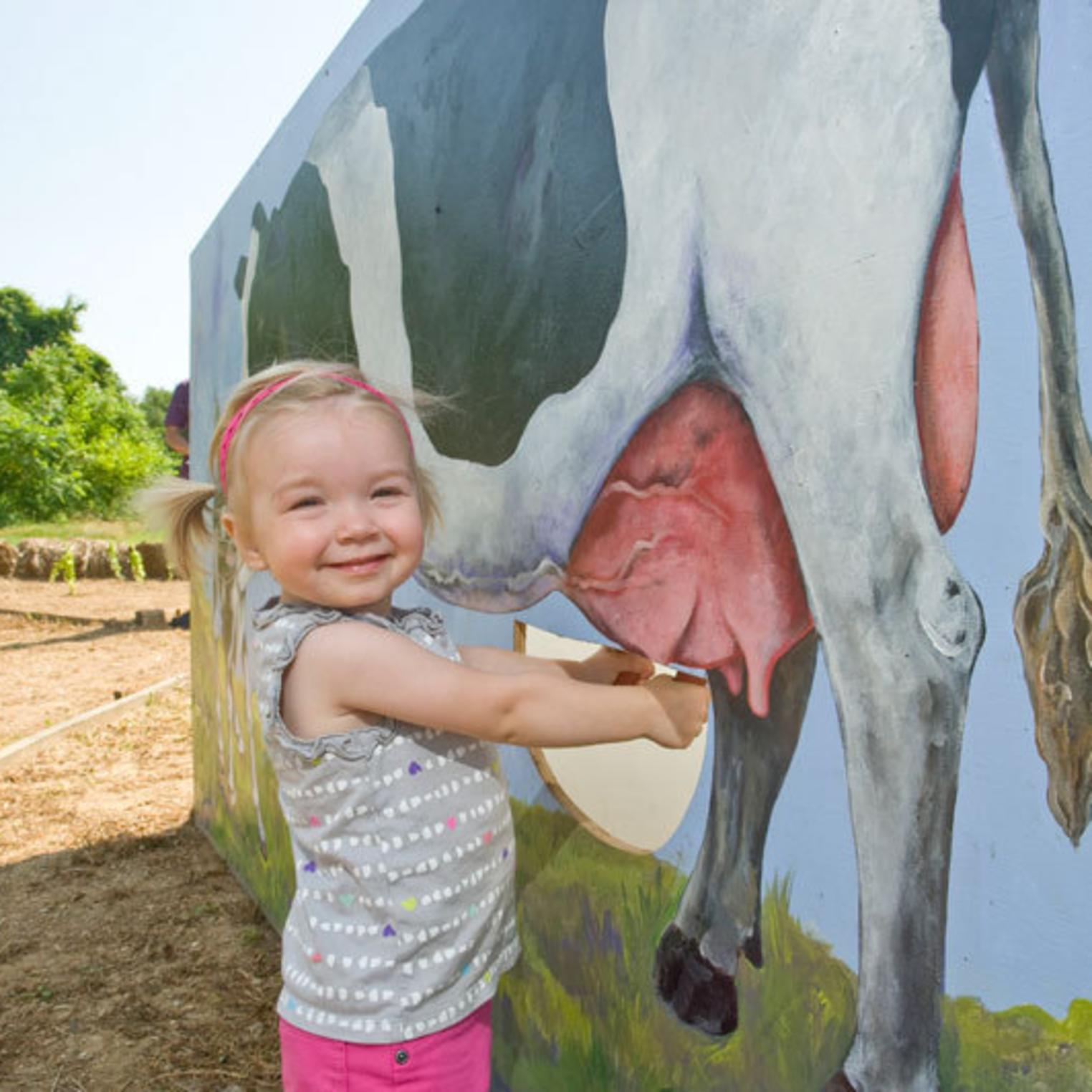 Milking the Cow at Paulus Farm Market