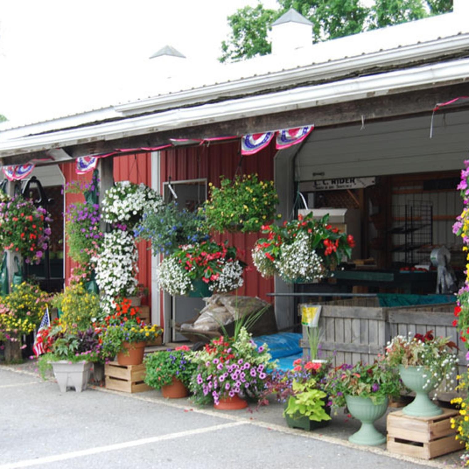 Front of Paulus Farm Market