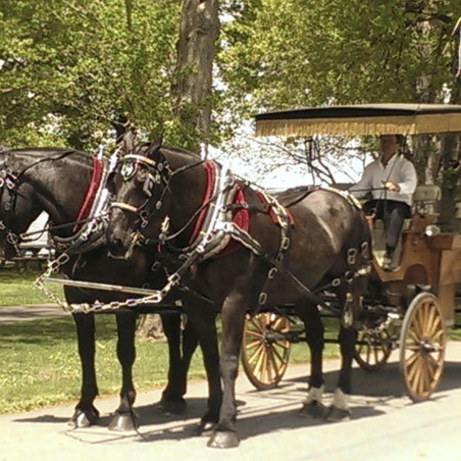 South Mountain Carriage Company