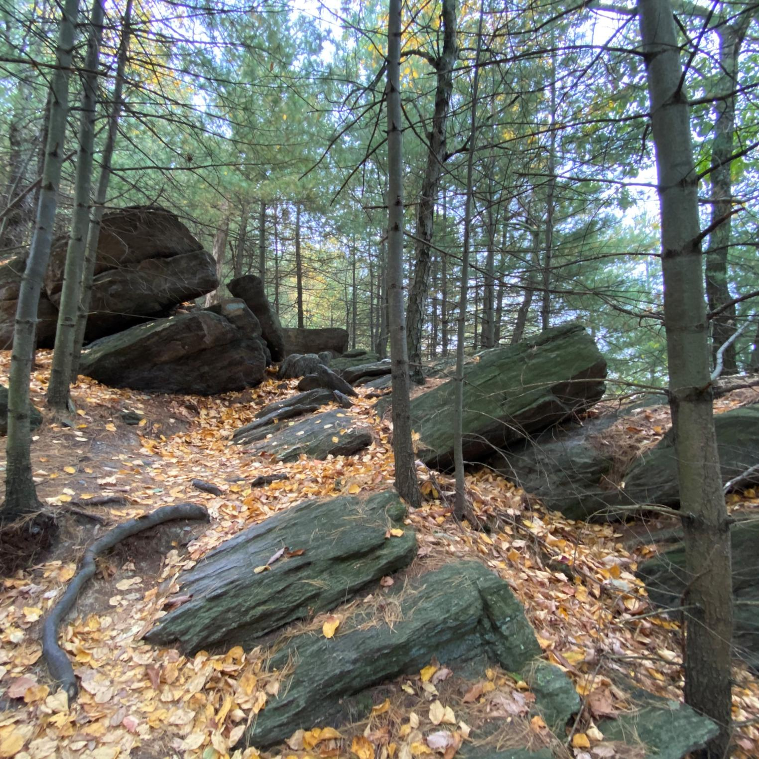 Sunset Rocks Trail