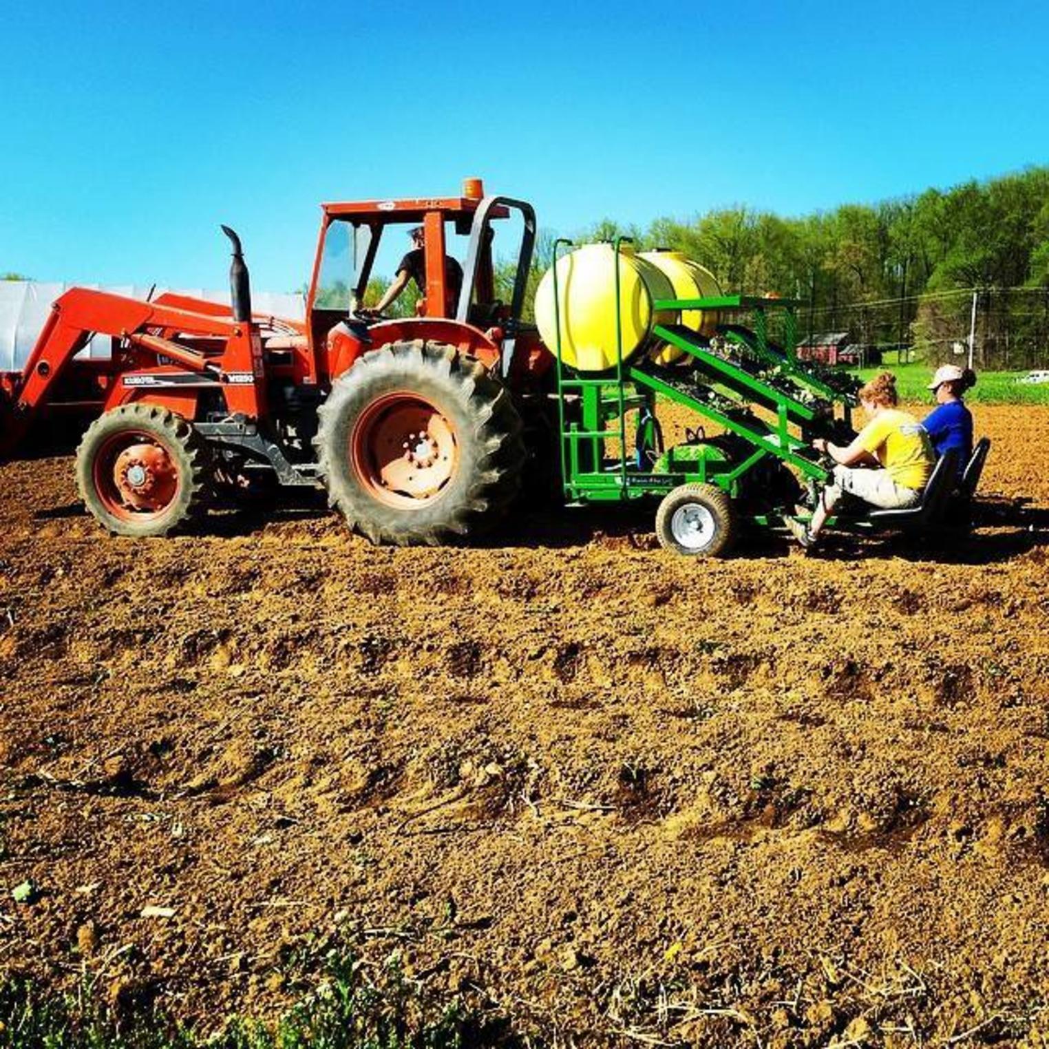 Planting at Everblossom Farm