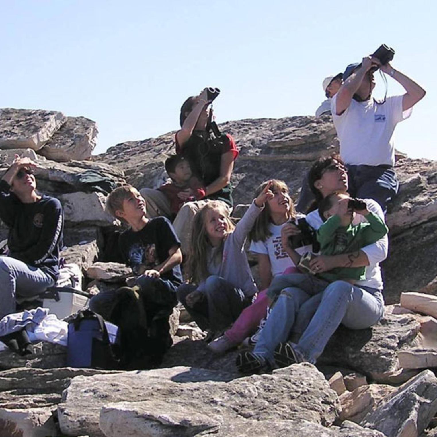 Rock Outcrop at Waggoner's Gap Hawk Watch