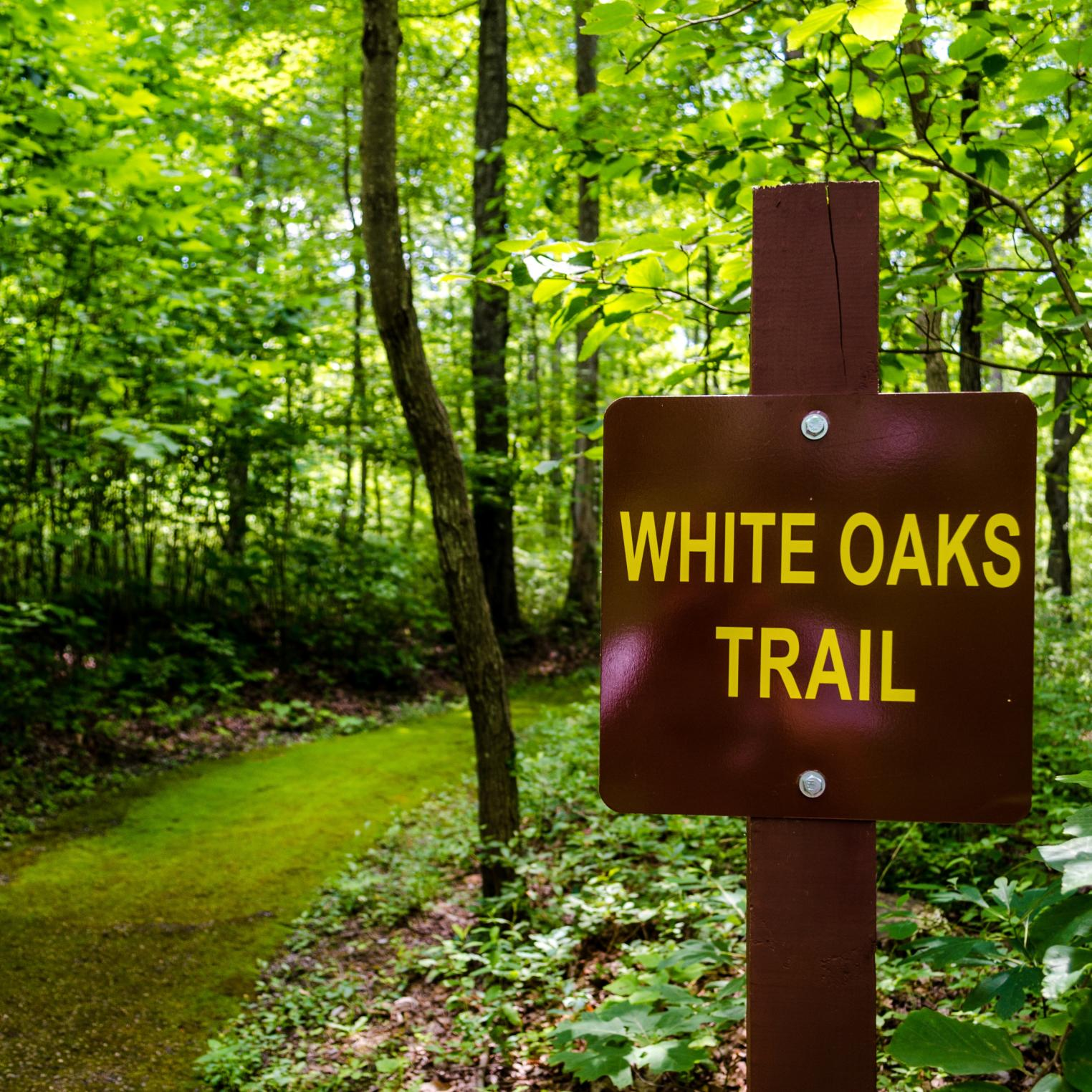 White Oaks Trail @ Kings Gap